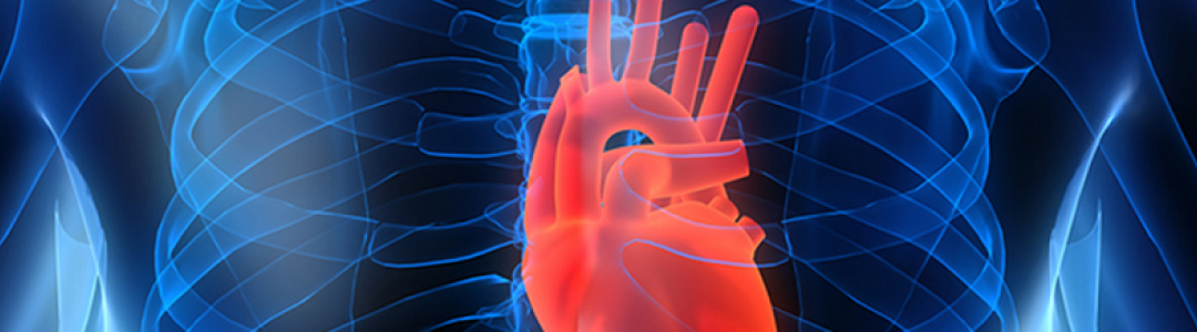 Cardiovascular Issues in DOT Commercial Drivers